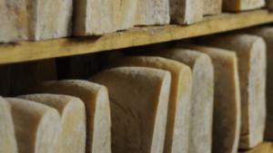 Immagine Toma di pecora brigasca, Presidio Slow Food Liguria